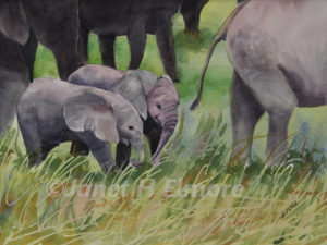 Elephant Twins Watercolor Painting