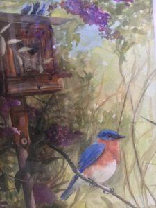 Ranch Bluebird