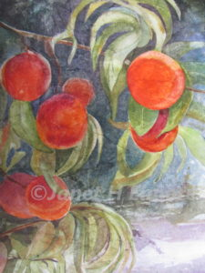 Ready to Eat Peaches Watercolor Painting