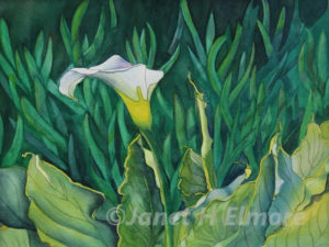 Coastal Lily Watercolor Painting
