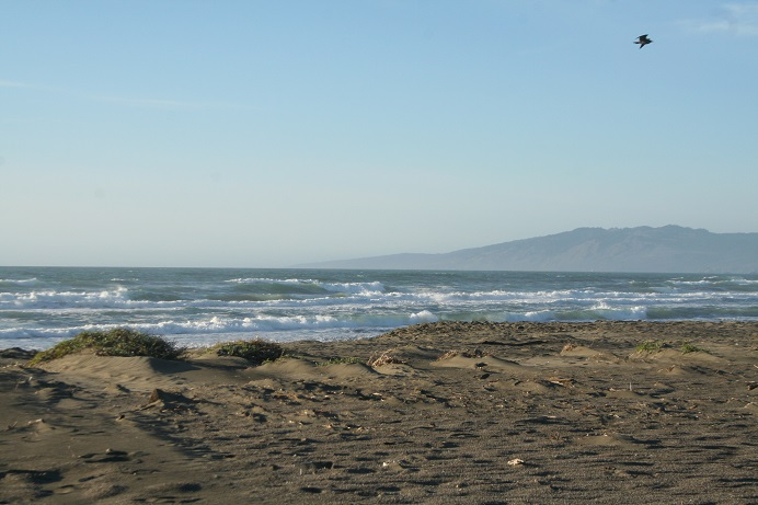 Beach at Salmon Creek Photo